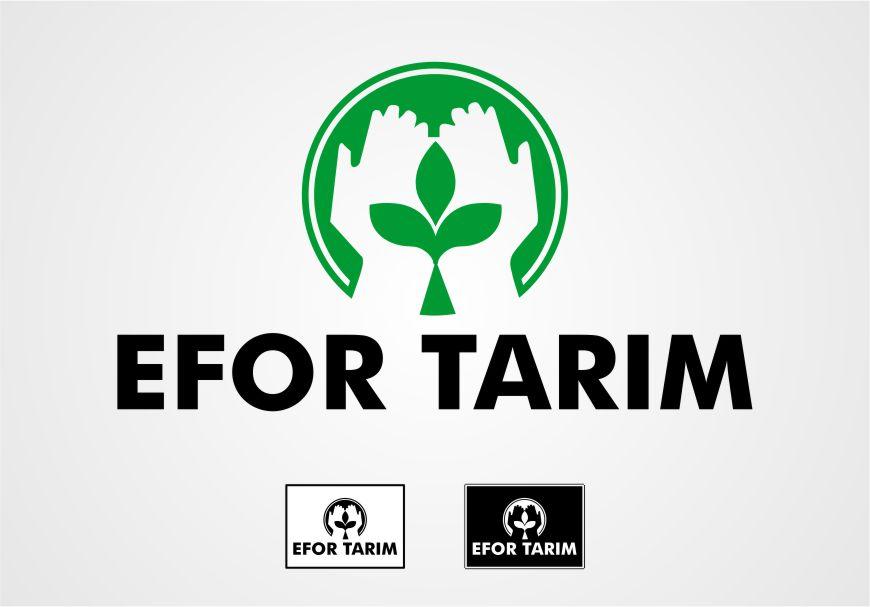 Logo Tasarımı - Efor Tarım