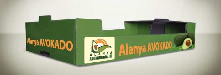 Karton Meyve Kutusu - Alanya Avakado Birliği