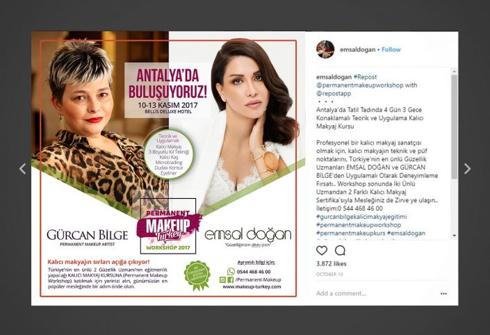 instagram reklamı, twitter ve facebook gönderi